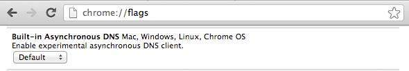 启用异步DNS解析器